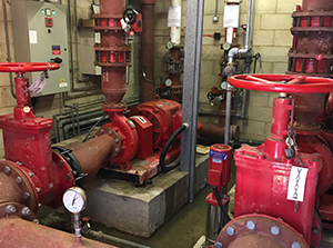 Two fire pumps in a plant room